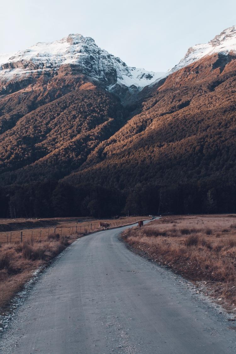 landscape4 (1 of 1)